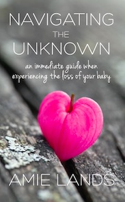 Navigating the Unknown<br><i>An Immediate Guide When Experiencing the Loss Of Your Baby</i>